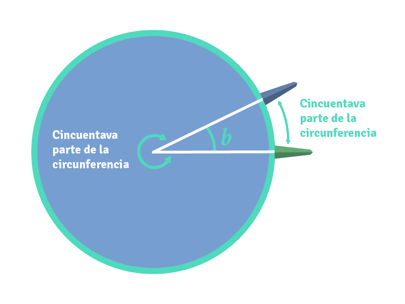 Correspondencia entre el ángulo y el arco que abarca.