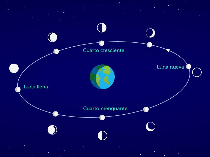Aplicaciones de la matemática: Fases y eclipses de la luna