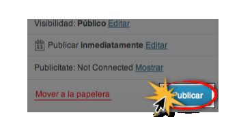 Botón publicar.