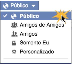 Clique no botão seletor público