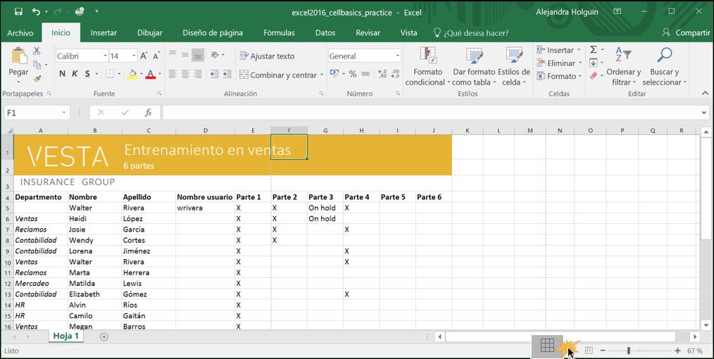 Imagen ejemplo de vista normal en Excel 2016.