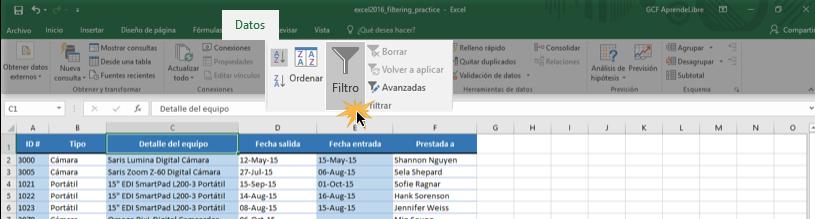 Imagen ejemplo del comando Filtro en la pestaña Datos.