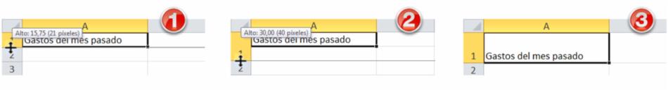 Imagen ejemplo de los pasos para ajustar la altura de una fila.