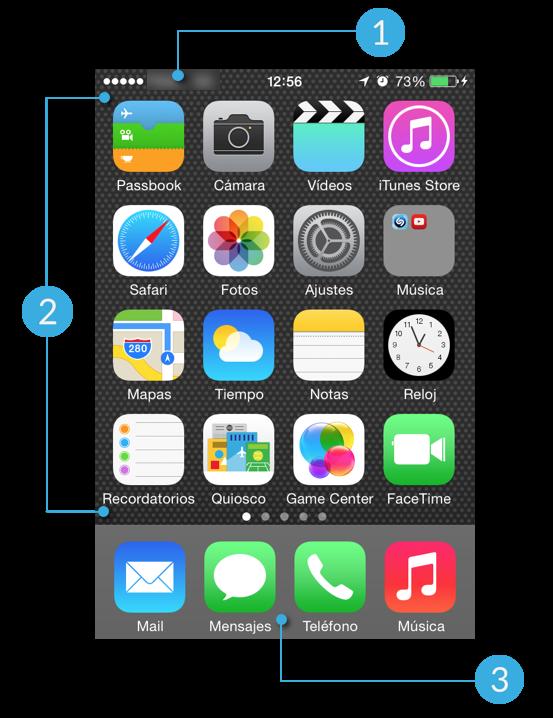 Distribución de la pantalla de iPhone.