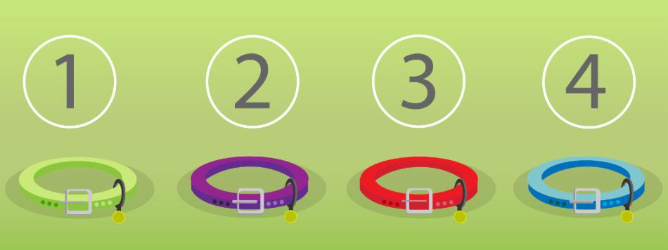 Conjunto de coleiras coordenados com um subconjunto dos números naturais.