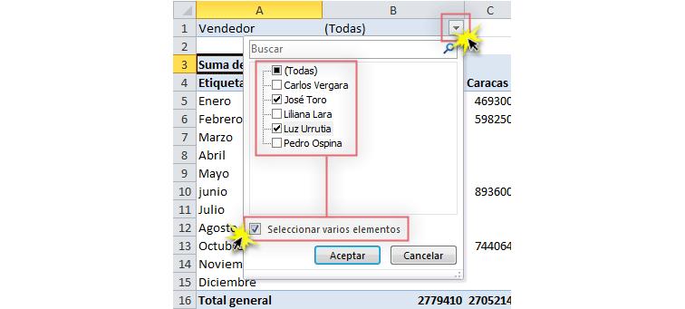 Imagen ejemplo de cómo activar un filtro en una tabla dinámica de Excel 2010.