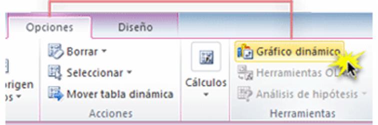Imagen ejemplo del comando Gráfico Dinámico en la pestaña Opciones de Excel 2010.