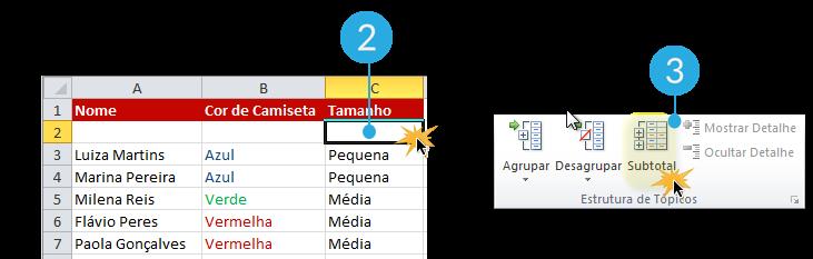Exemplo de imagem dos passos 2 e 3 para agrupar dados em subtotais no Excel 2010.