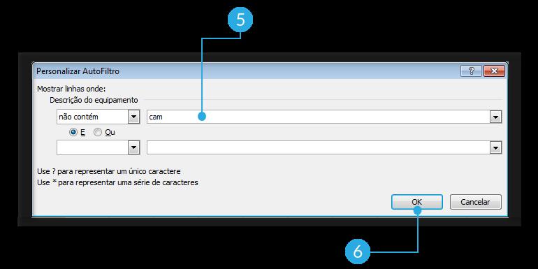 Exemplo de imagem dos passos 5 e 6 para aplicar filtros avançados em uma planilha do Excel 2010.