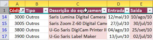 Exemplo de imagem do resultado do filtro numérico no Excel 2010.
