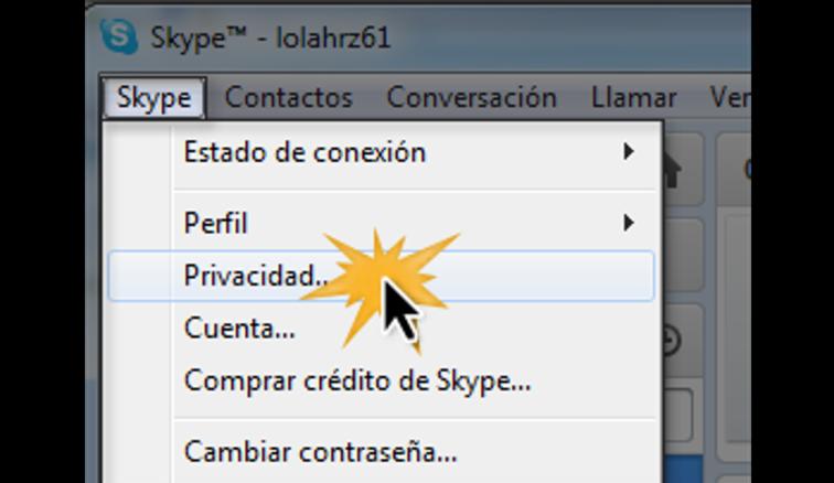 Menú desplegable de la opción Skype.