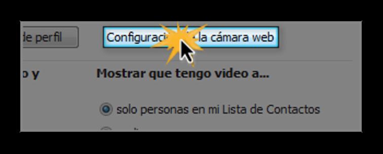 Opción configuración de la cámara web.