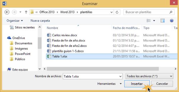 Vista del explorador de archivos y el botón Aceptar.