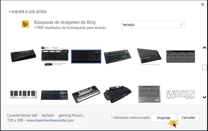 Vista de los resultados de búsqueda y el botón Insertar.
