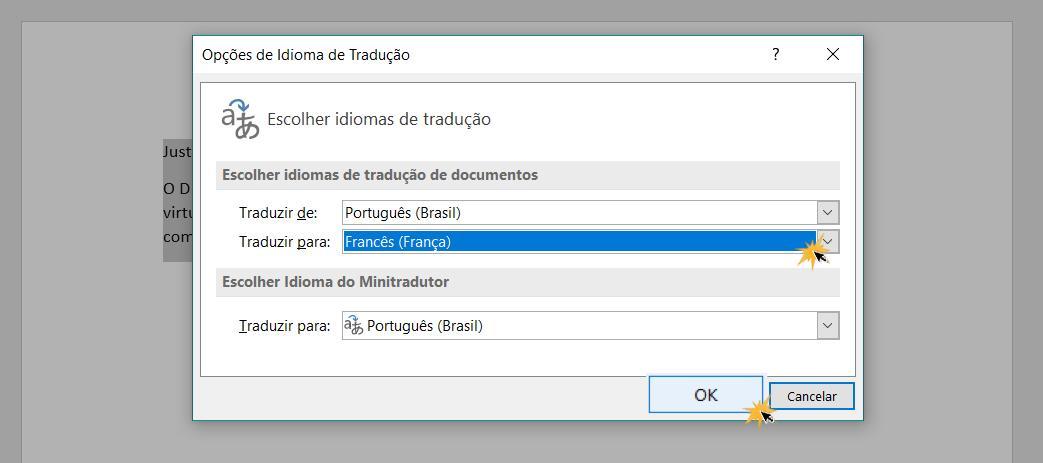 Caixa de configurações para escolher o idioma de tradução.